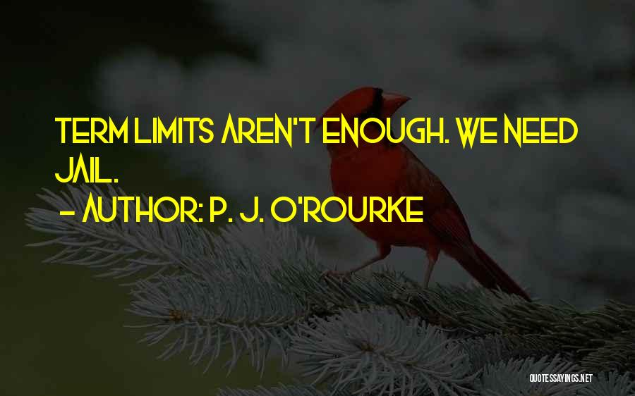 Term Limits Quotes By P. J. O'Rourke