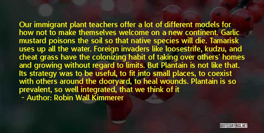 Term Limits Quotes By Robin Wall Kimmerer