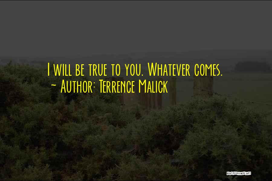 Terrence Malick Quotes 1697374