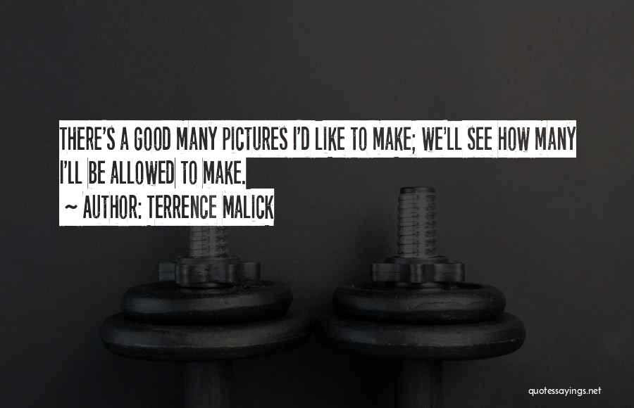 Terrence Malick Quotes 358163
