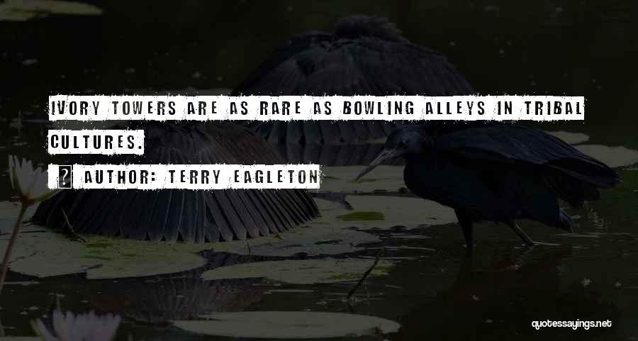 Terry Eagleton Quotes 1039348
