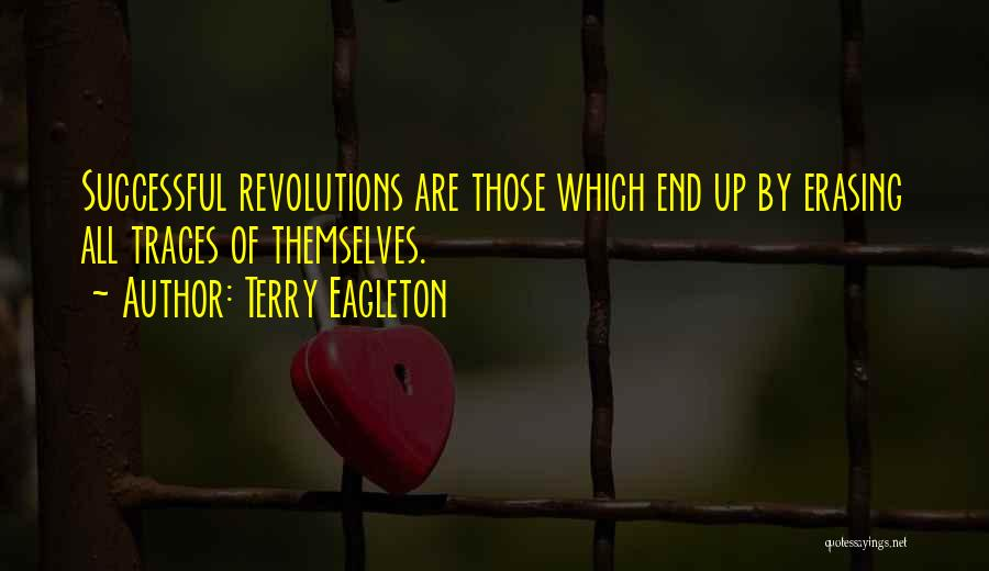 Terry Eagleton Quotes 1142435