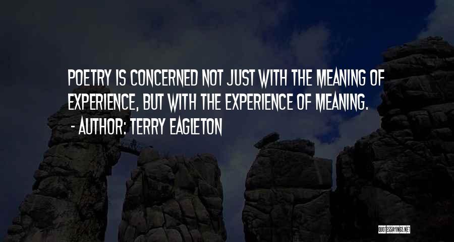 Terry Eagleton Quotes 1937758