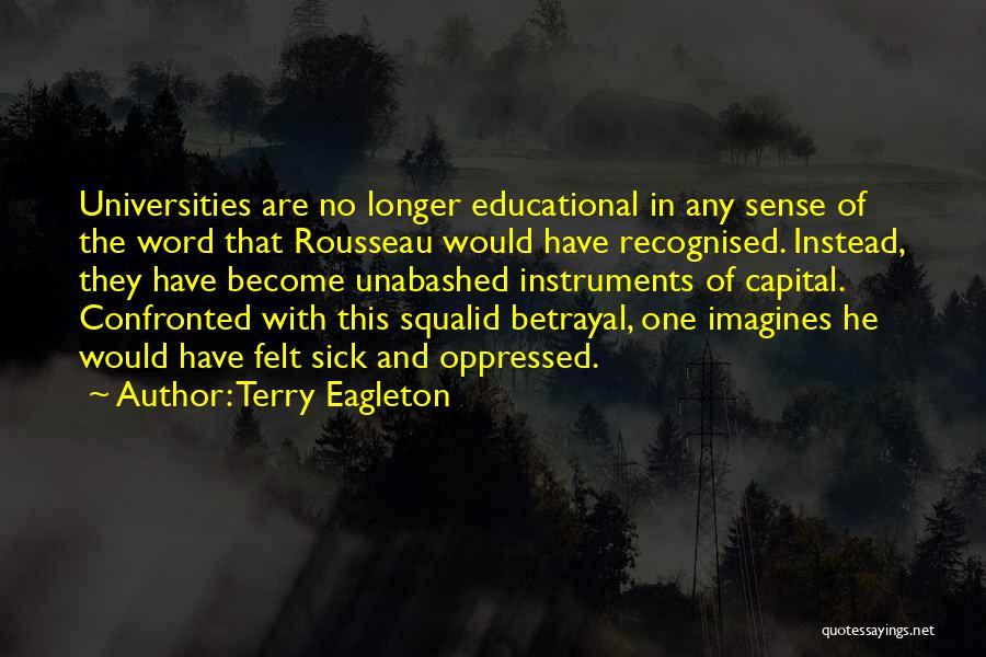 Terry Eagleton Quotes 264163