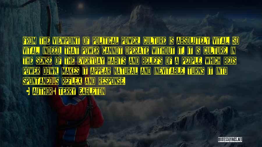 Terry Eagleton Quotes 654177