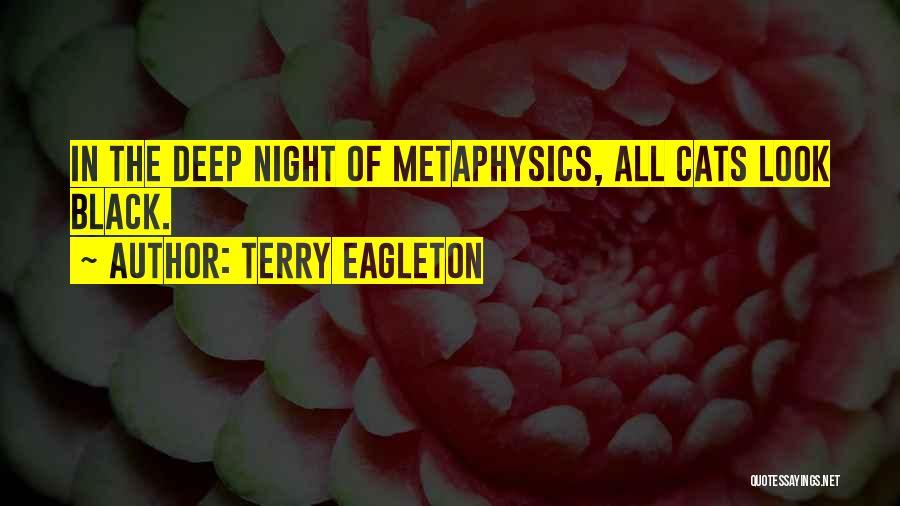 Terry Eagleton Quotes 945827