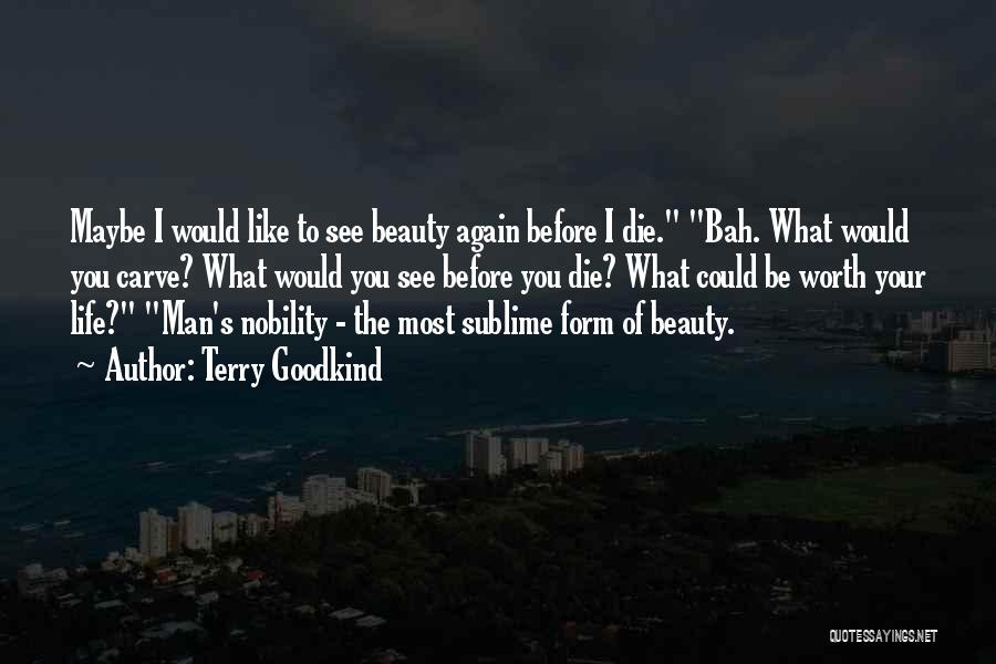 Terry Goodkind Quotes 817056