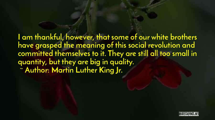 Thankful Quotes By Martin Luther King Jr.