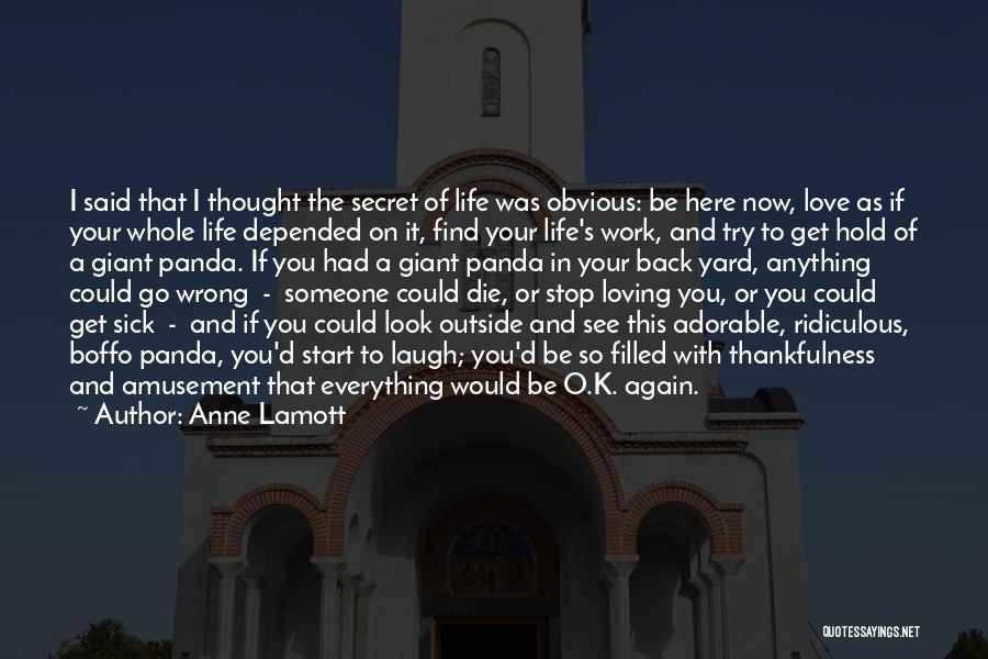 Thankfulness And Love Quotes By Anne Lamott