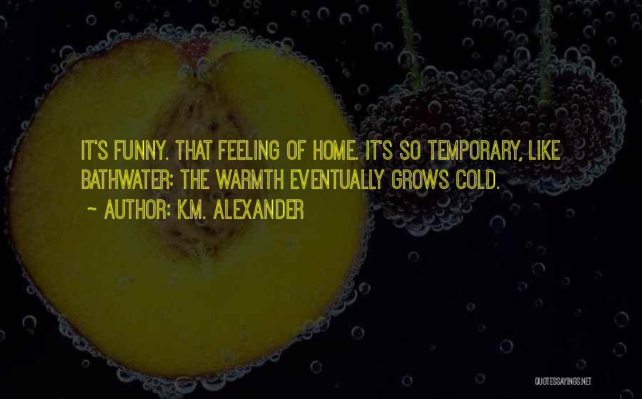 That Funny Feeling Quotes By K.M. Alexander