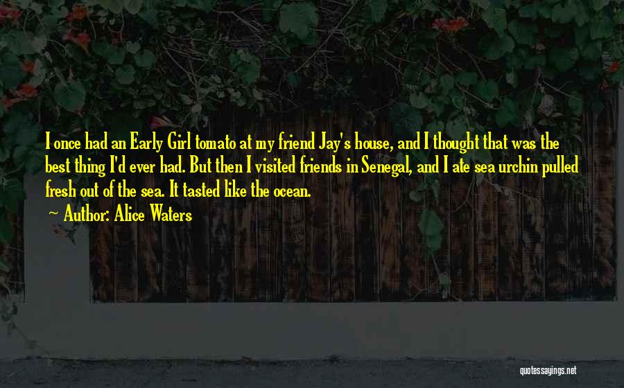 That Girl's My Best Friend Quotes By Alice Waters