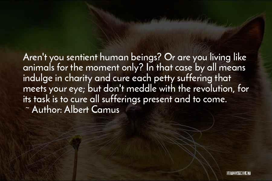 That Moment Quotes By Albert Camus