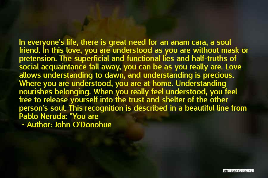 That Special Friend Quotes By John O'Donohue