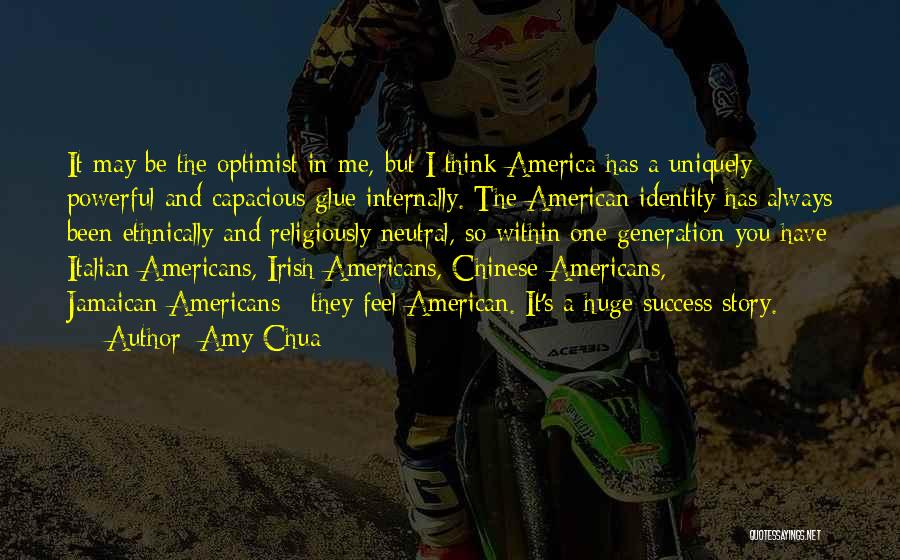 The American Identity Quotes By Amy Chua