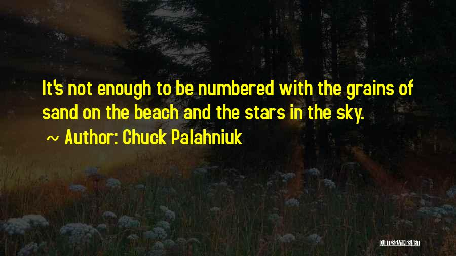 The Beach And Sand Quotes By Chuck Palahniuk