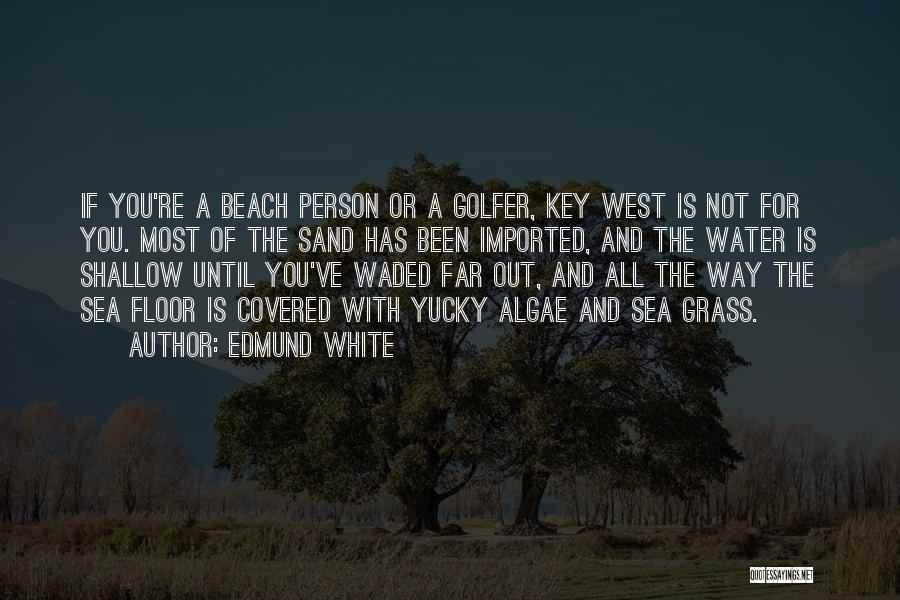 The Beach And Sand Quotes By Edmund White