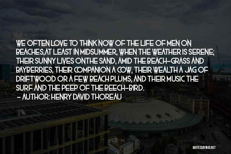 The Beach And Sand Quotes By Henry David Thoreau