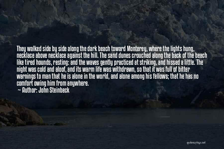 The Beach And Sand Quotes By John Steinbeck