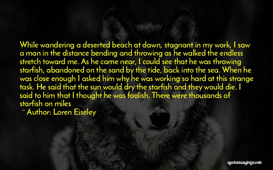 The Beach And Sand Quotes By Loren Eiseley