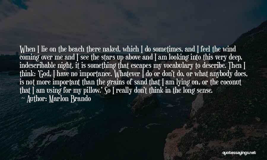 The Beach And Sand Quotes By Marlon Brando