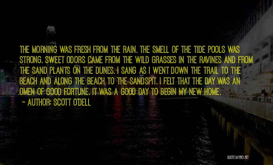 The Beach And Sand Quotes By Scott O'Dell