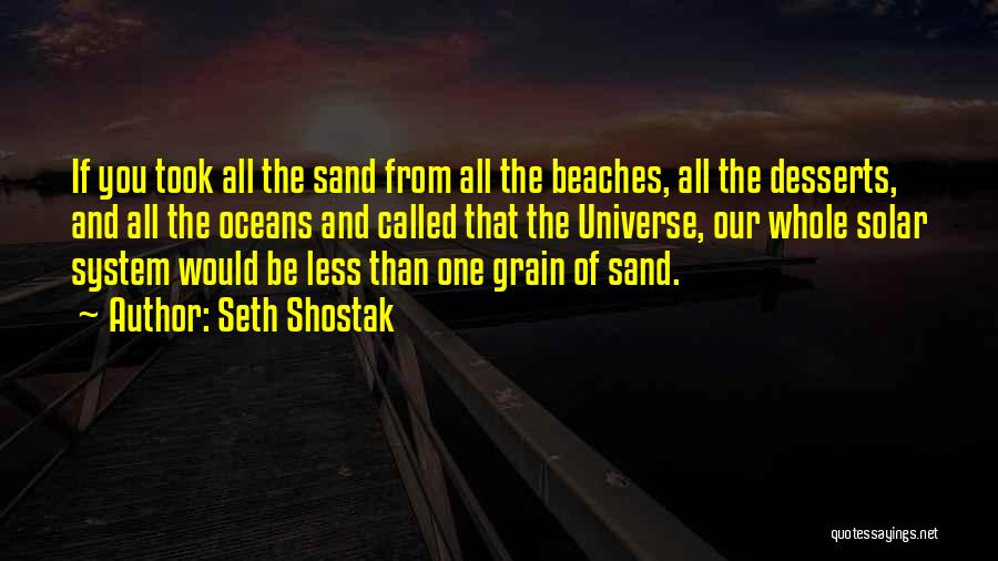 The Beach And Sand Quotes By Seth Shostak
