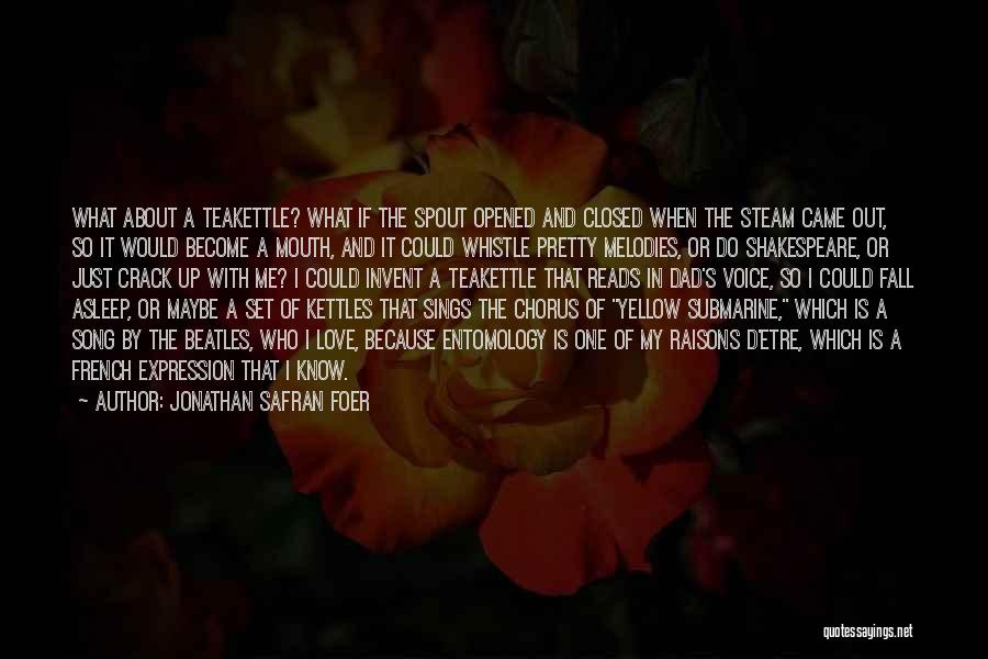 The Beatles Love Song Quotes By Jonathan Safran Foer