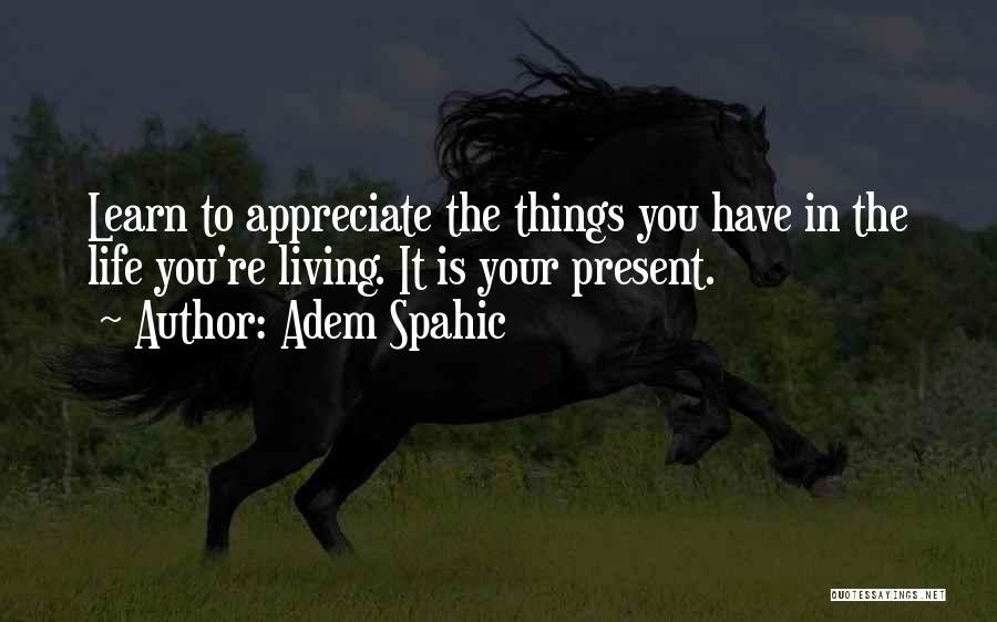 The Beautiful Things In Life Quotes By Adem Spahic