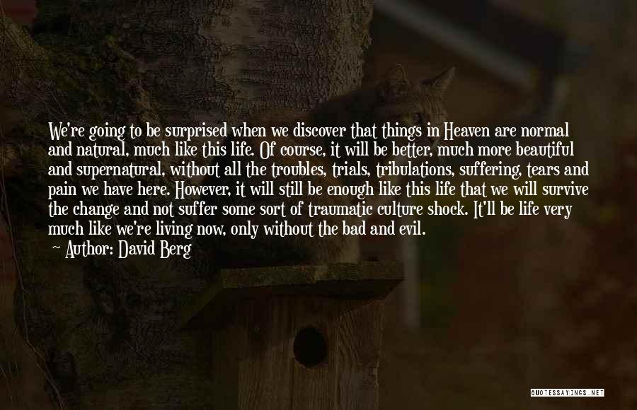 The Beautiful Things In Life Quotes By David Berg