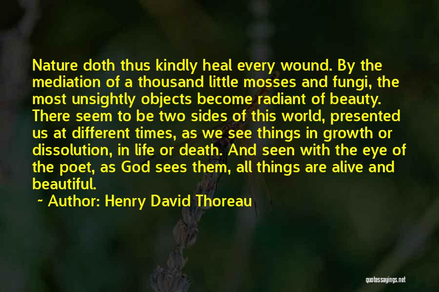 The Beautiful Things In Life Quotes By Henry David Thoreau