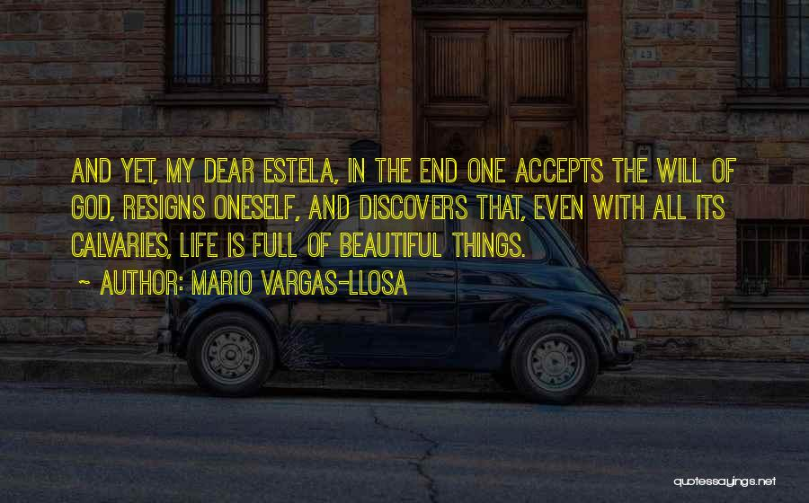 The Beautiful Things In Life Quotes By Mario Vargas-Llosa