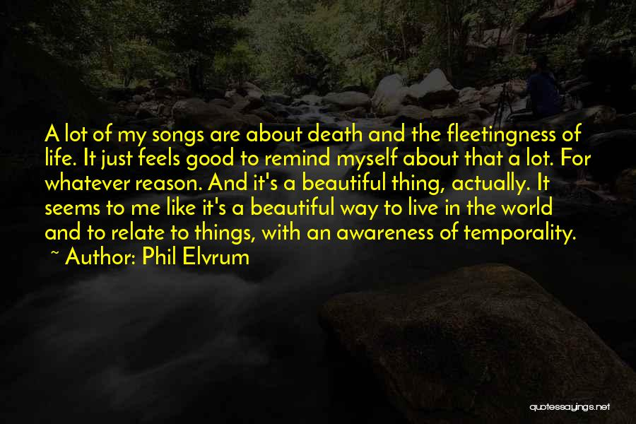 The Beautiful Things In Life Quotes By Phil Elvrum