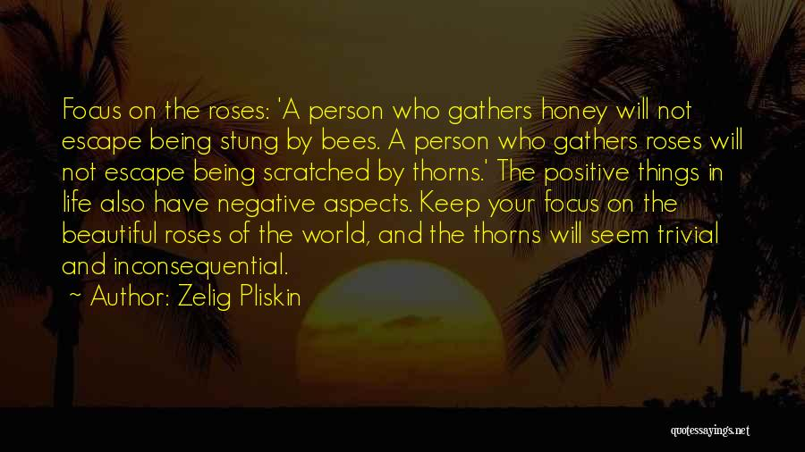 The Beautiful Things In Life Quotes By Zelig Pliskin