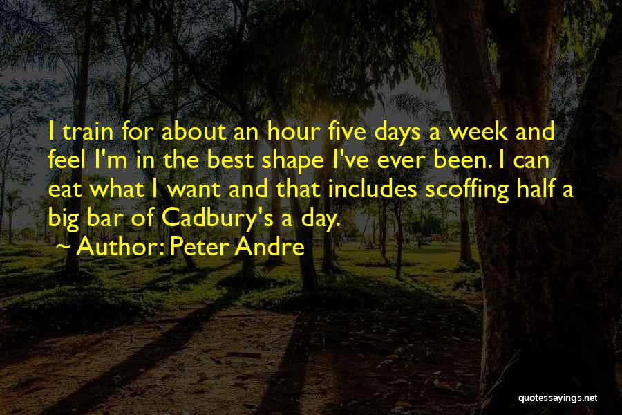 The Best Day Ever Quotes By Peter Andre