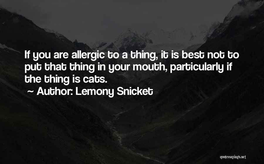The Best Thing Is You Quotes By Lemony Snicket