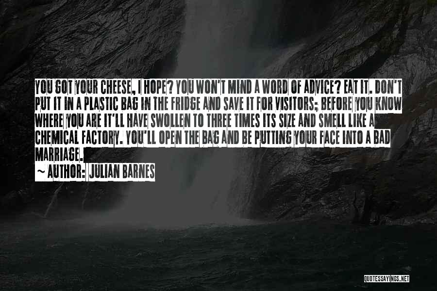 The Best Three Word Quotes By Julian Barnes