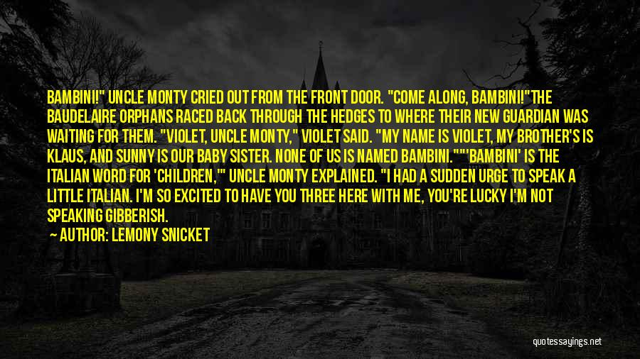 The Best Three Word Quotes By Lemony Snicket