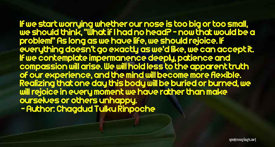 The Big Day Quotes By Chagdud Tulku Rinpoche