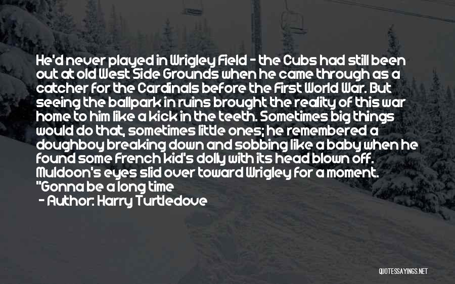 The Big Field Quotes By Harry Turtledove