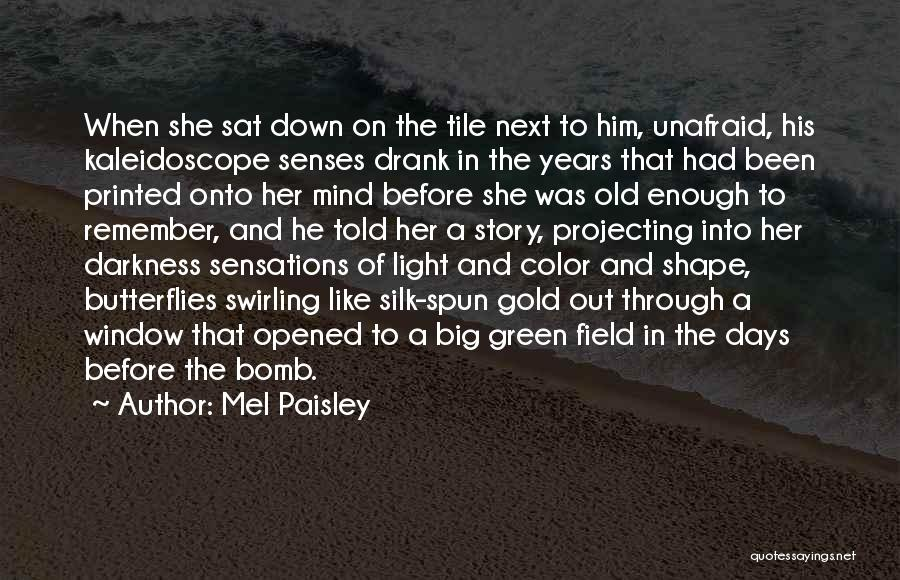The Big Field Quotes By Mel Paisley