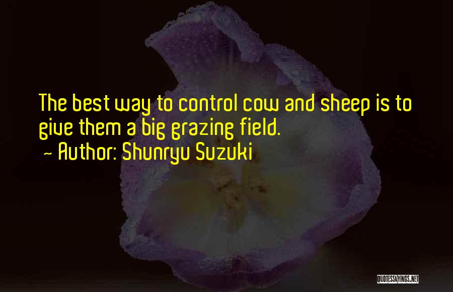 The Big Field Quotes By Shunryu Suzuki