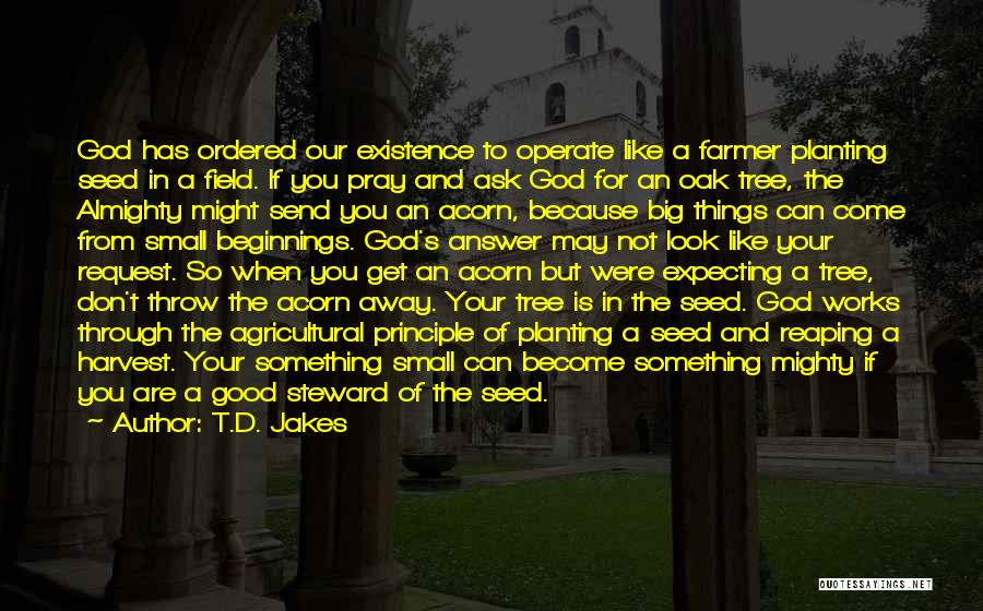 The Big Field Quotes By T.D. Jakes