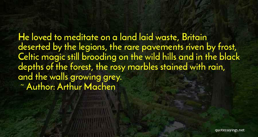 The Black Forest Quotes By Arthur Machen