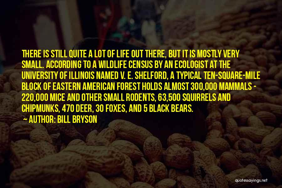 The Black Forest Quotes By Bill Bryson