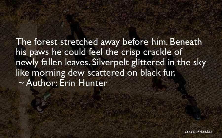 The Black Forest Quotes By Erin Hunter