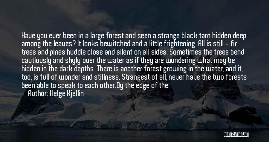 The Black Forest Quotes By Helge Kjellin