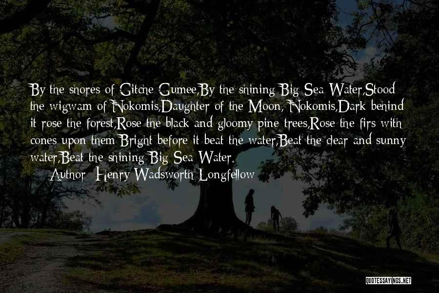 The Black Forest Quotes By Henry Wadsworth Longfellow