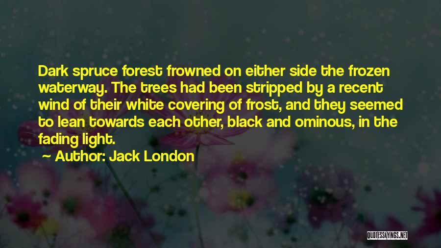 The Black Forest Quotes By Jack London