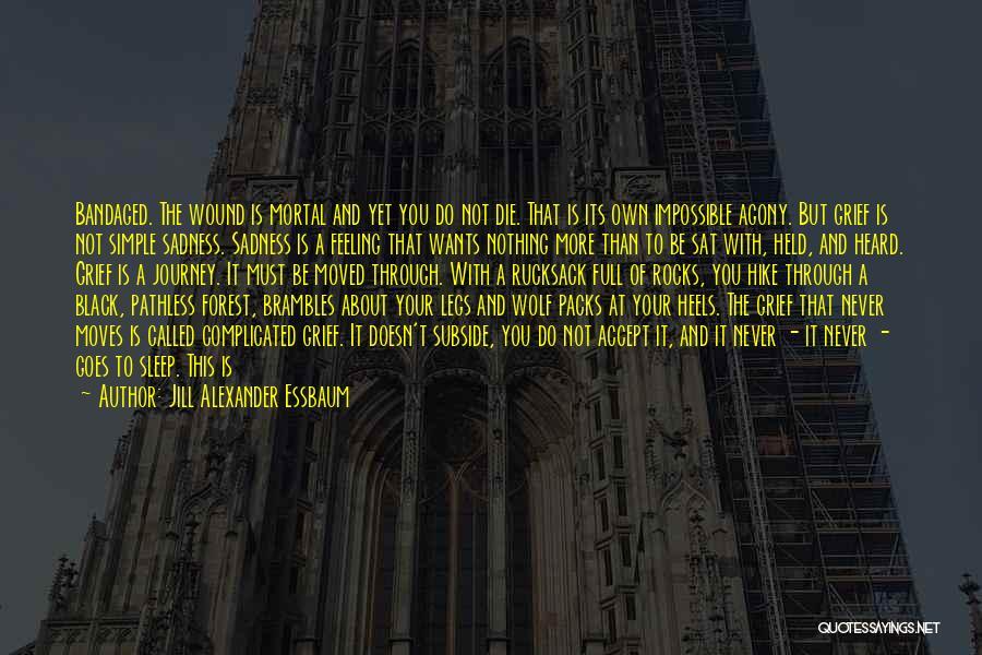 The Black Forest Quotes By Jill Alexander Essbaum