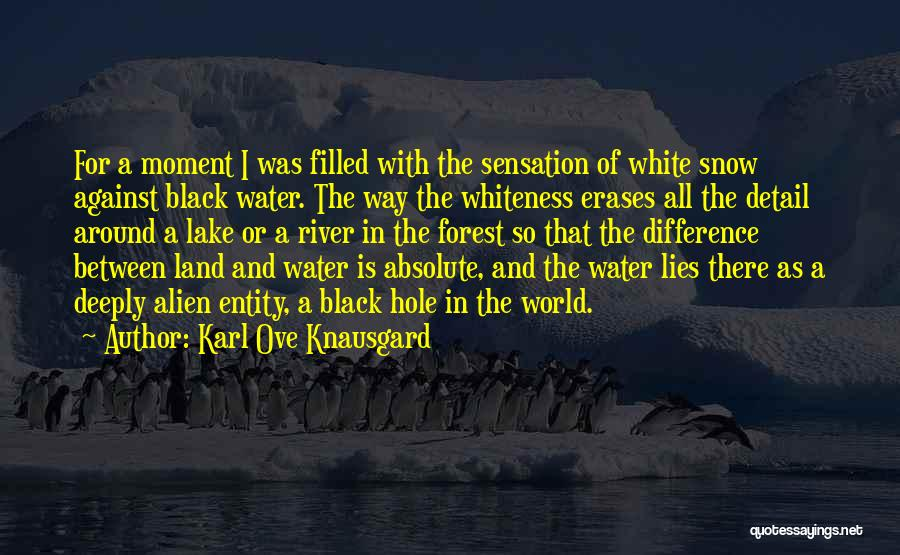 The Black Forest Quotes By Karl Ove Knausgard